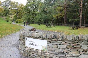 Aira Force - dog walk in Cumbria